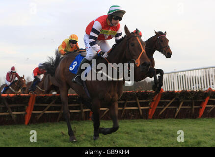 Horse Racing - Race Meeting - Market Rasen Racecourse - Stock Photo
