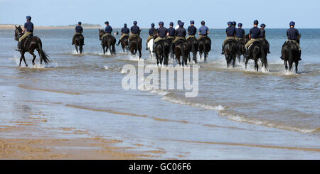 Household Cavalry Mounted Regiment training - Stock Photo