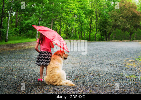 Girl and golden retriever puppy dog standing on footpath under an umbrella in rain - Stock Photo