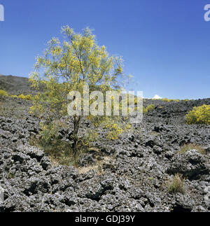 geography / travel, Italy, Sicily, Aeolian Islands, volcano Mount Etna, - Stock Photo