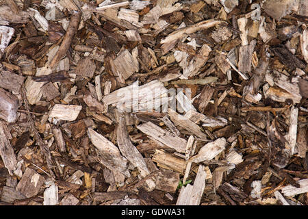 Wood chip background. Garden mulch made up of mulched wood and bark used to suppress weed growth - Stock Photo
