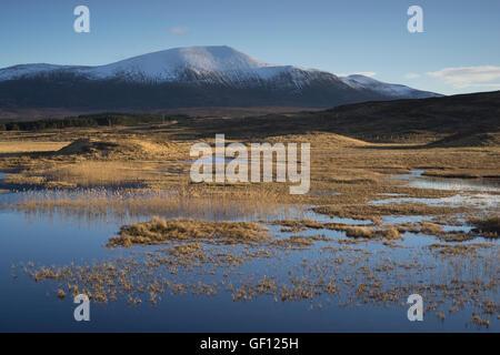 A view towards the munro Ben Klibreck above a small lochan near Altnaharra, Sutherland, Scotland, Scottish Highlands - Stock Photo