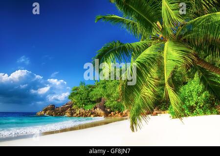 paradisiac anse georgette beach in seychelles praslin island - Stock Photo