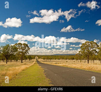 Long straight road leading through golden grasslands & eucalypt woodlands of outback Australia to distant horizon - Stock Photo