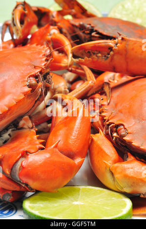 Crab from the Mekong delta on the dish - Stock Photo