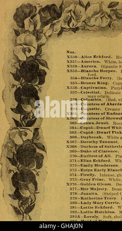 1900 catalogue of Plant Seed Company - reliable vegetable, farm, and flower seeds (1900) - Stock Photo