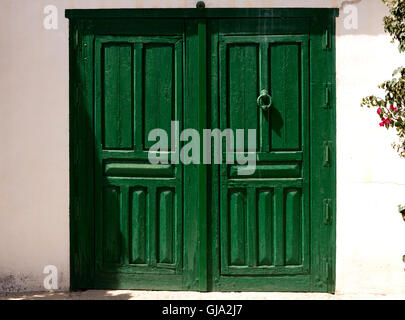 green wooden door closed - Stock Photo