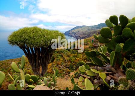 spain canary islands east - Stock Photo