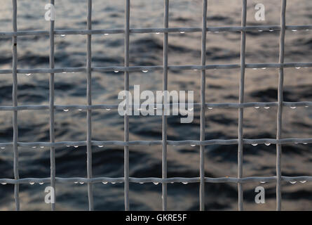Metallic net with drops against sea background. - Stock Photo