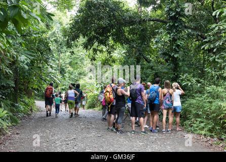 Tourist groups in Manuel Antonio national Park, Costa Rica, Central America - Stock Photo