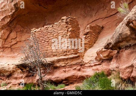 Saddlehorn Pueblo Anasazi ruins, Sand Canyon Trail, Canyons of the Ancients National Monument, Colorado. - Stock Photo