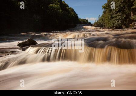 The Aysgarth Falls near Aysgarth on the River Ure , Wensleydale , Yorkshire Dales - Stock Photo