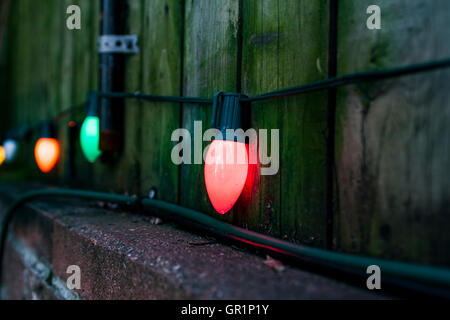 Colorful bulbs by the wooden fence in the backyard - Stock Photo