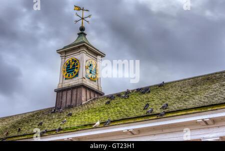 Weather vane on rooftop - Stock Photo