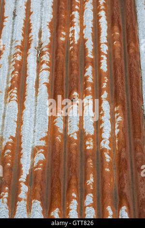 Rusty corrugated iron roof. - Stock Photo