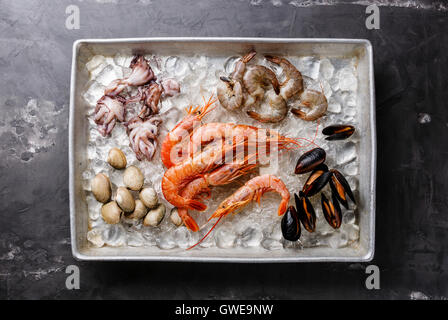 Raw fresh Seafood Cocktail with Mussels, Clams, Vongole, Prawns and Shrimps in metal tray on ice - Stock Photo