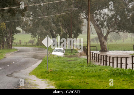 Near Meadows, Adelaide Hills, South Australia. 14th September, 2016. A driver stranded in his partly submerged car - Stock Photo