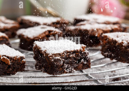 homemade chocolate brownies with icing sugar on a cake rack. - Stock Photo