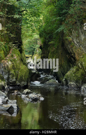 River Conway flowing through a gorge known as the Fairy Glen in North Wales near betws y coed - Stock Photo