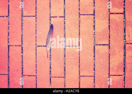 Vintage toned feather on a sidewalk, space for text. - Stock Photo