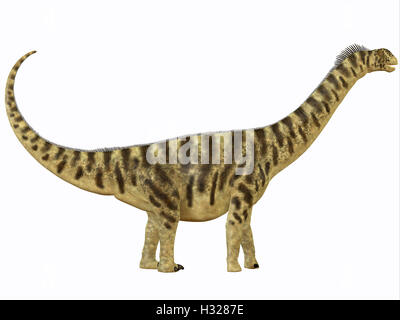 Camarasaurus Profile - Stock Photo