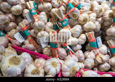A display of new season French Tarn Rose Garlic on sale in a specialst grocer's shop in North Yorkshire England - Stock Photo