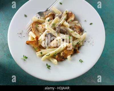 Wiild  chanterelle or girolle, Pied de Mouton Mushrooms  or hedgehog, Pied Bleu or blue foot musrooms with pasta - Stock Photo