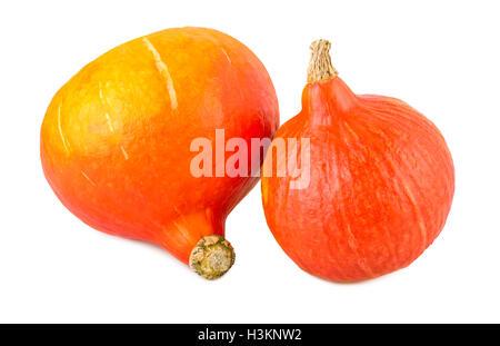 Pumpkins red kuri hokkaido isolated on white - Stock Photo