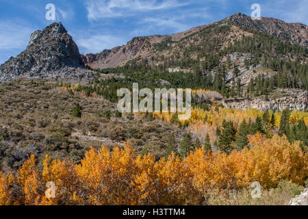 Fall colors on the east side of The Sierras, going up Tioga Pass near Lee Vining and Mono Lake in California. - Stock Photo
