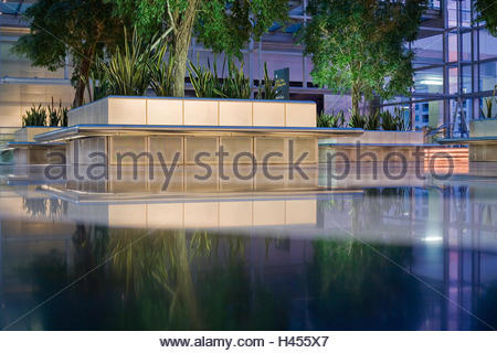 Commercial buildings, Atrium, Plant, Reflection, Indoors, Lobby, entrance, hall, nobody, empty, green plants, light, - Stock Photo
