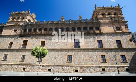 Palacio de Monterrey in Salamanca, Spain. This palace is a famous example of the Plateresque architectural style. - Stock Photo