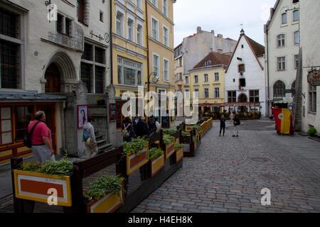 A produce vendor in Old Town, Tallinn, Estonia. - Stock Photo