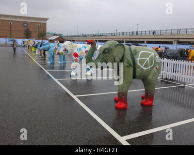 Meadowhall, Sheffield, UK. 16th October 2016. UK Weather: Despite heavy rain, a crowd of people attends the Herd - Stock Photo