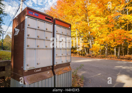 Canada Post Rural Group Mailboxes In Laurentides, in Autumn - Stock Photo