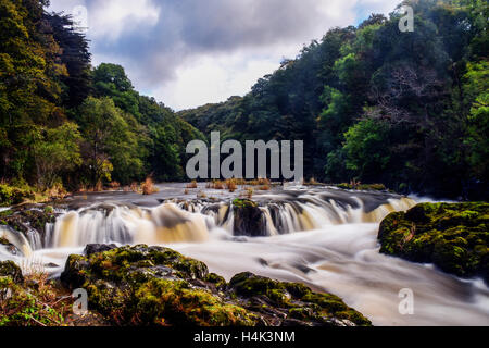 Cenath Fall on River Teifi, Cardigan, Wales, UK. 17th October, 2016. weather Monday 17th of October 2016  river - Stock Photo