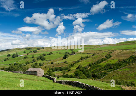 Looking down Walden in the summer, Wensleydale in the Yorkshire Dales, UK. - Stock Photo