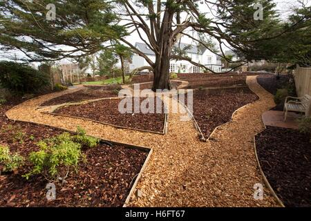 Wood chippings laid as garden paths, wooden edging, and bark chippings used as mulch on the borders, with garden - Stock Photo