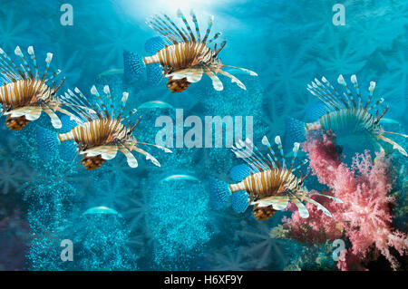 Lionfish montage with bubbles and soft coral - Stock Photo