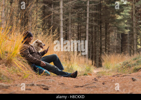 A man and a dog hiking in the woods looking at the phone dogs sitting on a woodland trail in autumn - Stock Photo