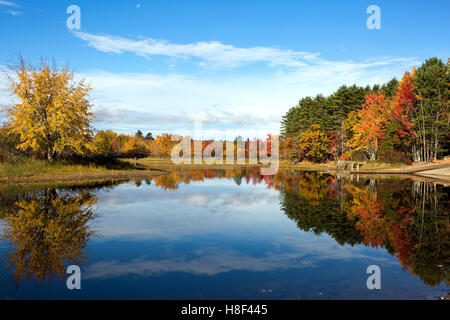 Vibrant autumn leaves and colors of fall tree foliage reflect on the waters of Lake Sabago, Maine in October. - Stock Photo