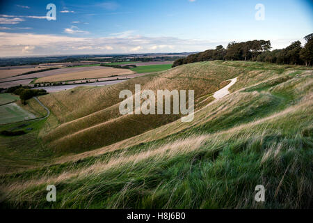 The Cherhill White Horse from Oldbury Iron Age hill fort in Wiltshire, UK - Stock Photo