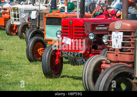 England, Yorkshire - Tractors being shown at the Masham Steam Rally, an antique show for old tractors, cars, and - Stock Photo