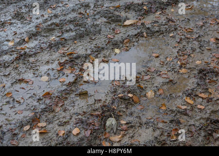 Muddy and waterlogged autumnal / winter country tracks / trails. Metaphor stick in the mud, muddy texture, muddy - Stock Photo