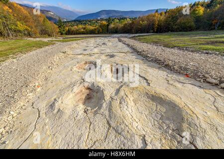 Sauropod footprints in Plagne in the Jura Ain France . Footprints left by diplodocus (herbivorous sauropods) in - Stock Photo