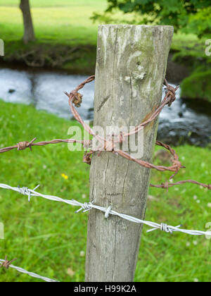 Barbed wire on wooden fence post UK - Stock Photo