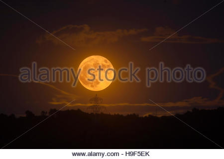 Supermoon rising over Parc Collserola, near Sant Cugat del Valles, Barcelona, November 14th, 2016. The moon won't - Stock Photo
