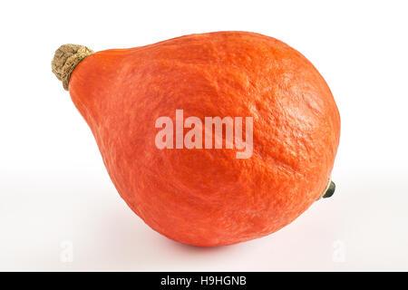 Red kuri squash (Hokkaido pumpkin) isolated on white background - Stock Photo