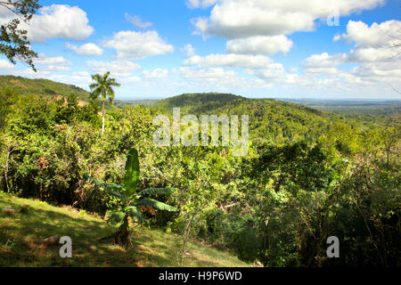 Beautiful landscape of Las Terrazas, Viñales, Cuba with rolling hills covered in lush green vegetation. - Stock Photo