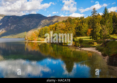Trees with beautiful autumn colors under a blue sky reflect in the Bohinj lake of the Triglav National Park, Slovenia. - Stock Photo