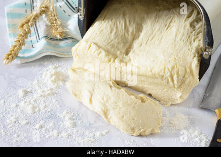Fresh dough and ears on a stone gray background, dough in the bread machine. Bakery background. - Stock Photo